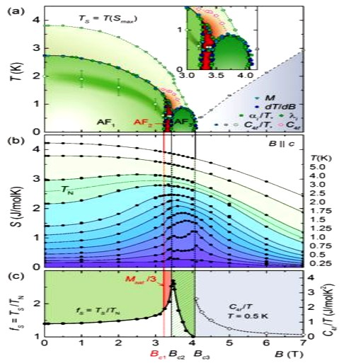 Entropy evolution in the magnetic phases of CePdAl