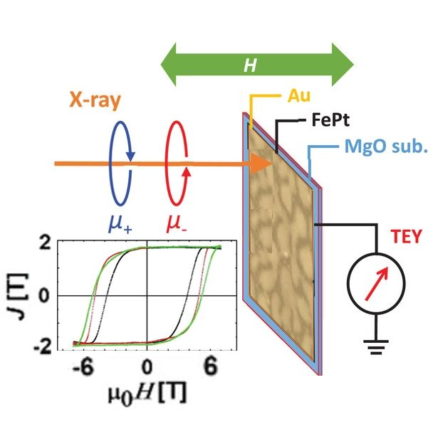 Record Magnetic Performance in FePt Nanomaterials