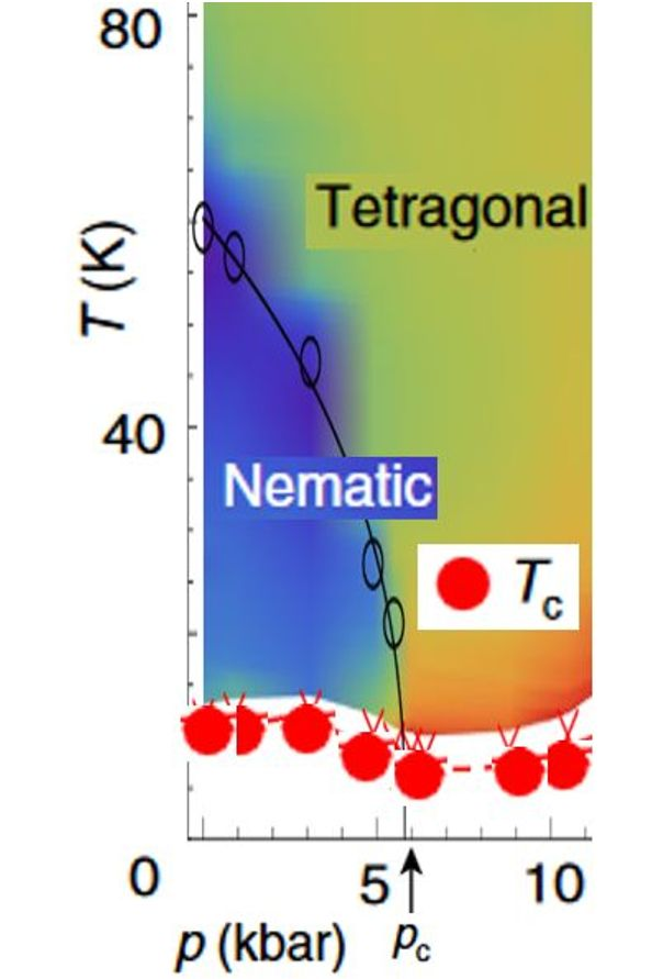 Quenched nematic criticality and two superconducting domes in Fe-superconductor