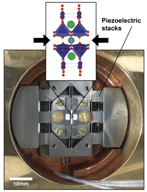 Uniaxial Pressure Control of Competing Orders in a High-Temperature Superconductor