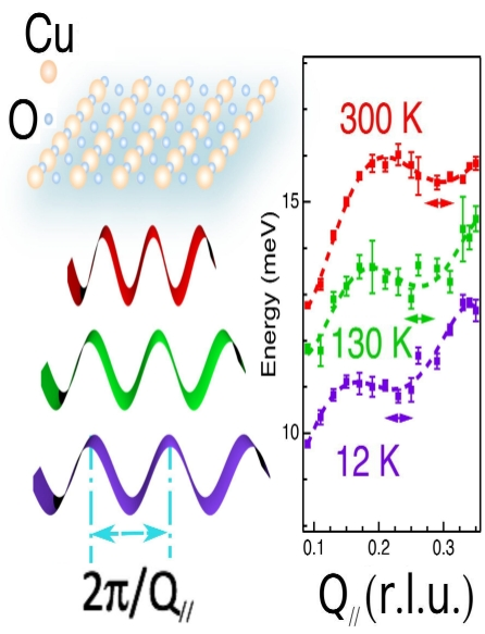 Low-Energy Phonon Anomalies in Cuprates with Stripes